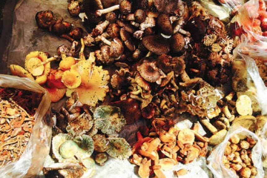 Mushroom consumption has been growing about 10 per cent annually over the past few years.