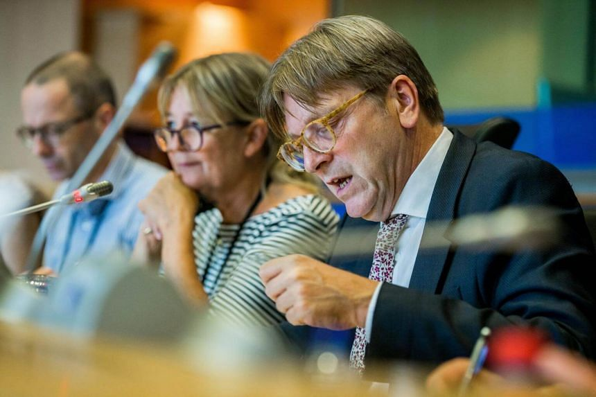 Brexit Coordinator for the European Parliament Guy Verhofstadt speaks during the Brexit negotiations at the EU Parliament in Brussels on Aug 30, 2017.