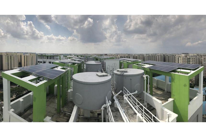 Essential block services such as water tanks and lift motor rooms were strategically located to optimise available space for installation of solar panels on the roofs, with access routes planned for easy maintenance.