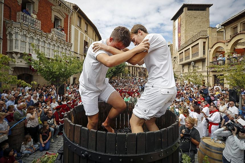 Two youngsters pressing grapes the traditional way during the 27th edition of the Wine Harvest Fiesta held in Olite, Spain, on Sunday. Every year, around late August or early September, the Wine Guild of Navarre organises activities in the mediaeval