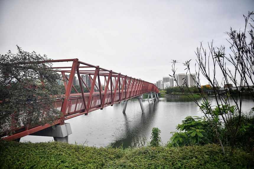 Lorong Halus wetland in Tampines is part of the  National Heritage Board's 17th heritage trail.