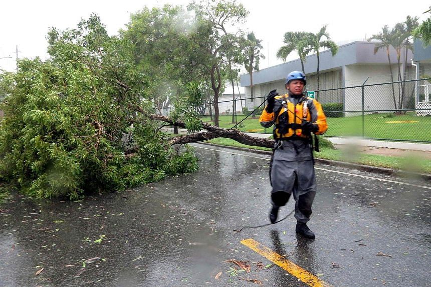 Search and rescue crew member Julio Feliciano ties a rope to a fallen tree to get it pulled by a truck during a search mission on Sept 6, 2017.