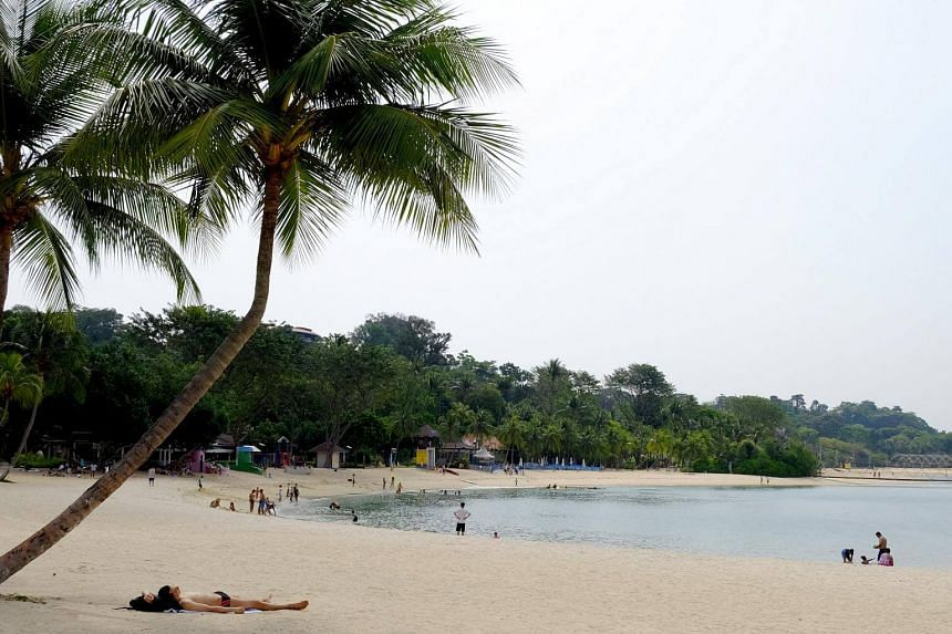 The Straits Times understands that eyewitnesses saw a pair of hands waving in the water, and heard someone shouting for help.