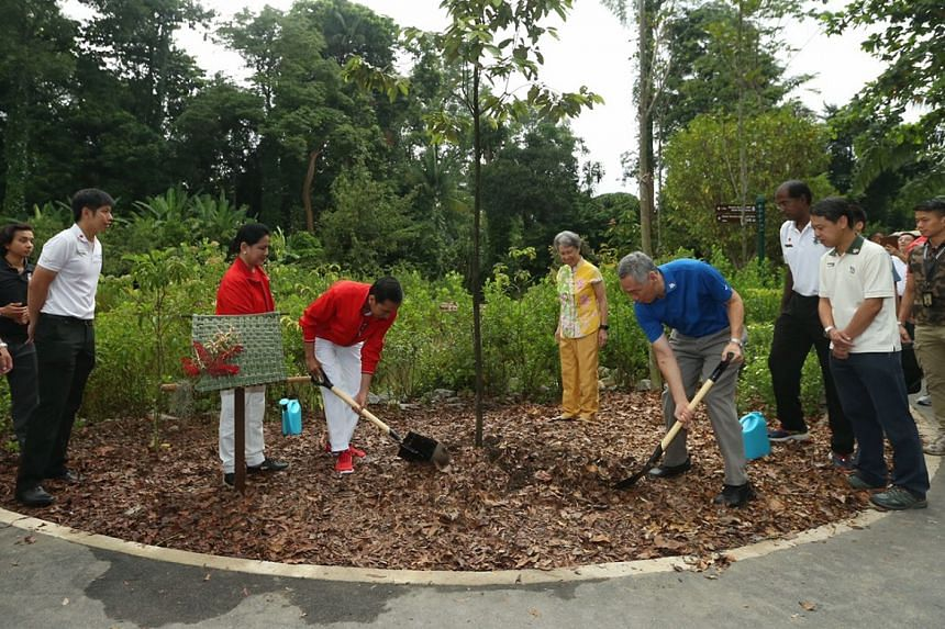 PM Lee Hsien Loong (in blue) and Indonesia President Joko Widodo (in red), along with their spouses Mrs Lee and Iriana, plant a Sunda Oak at the Singapore Botanic Gardens on Sept 7, 2017.