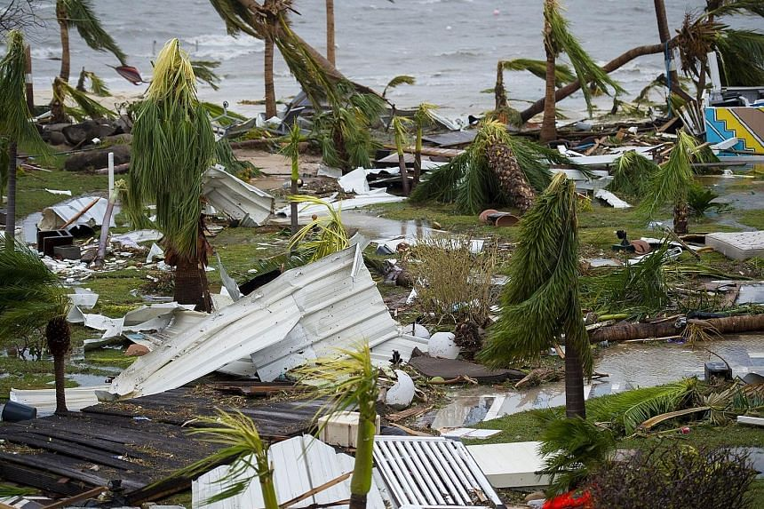 Destroyed palm trees outside a hotel in Marigot, on the island of Saint Martin, after the passage of Hurricane Irma on Wednesday. France, the Netherlands and Britain are sending emergency rations.