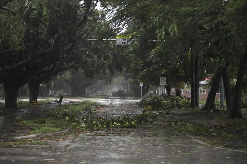 Trees and branches are seen after being knocked down by the high winds as hurricane Irma arrives in Miami, Florida, on Sept 10, 2017.