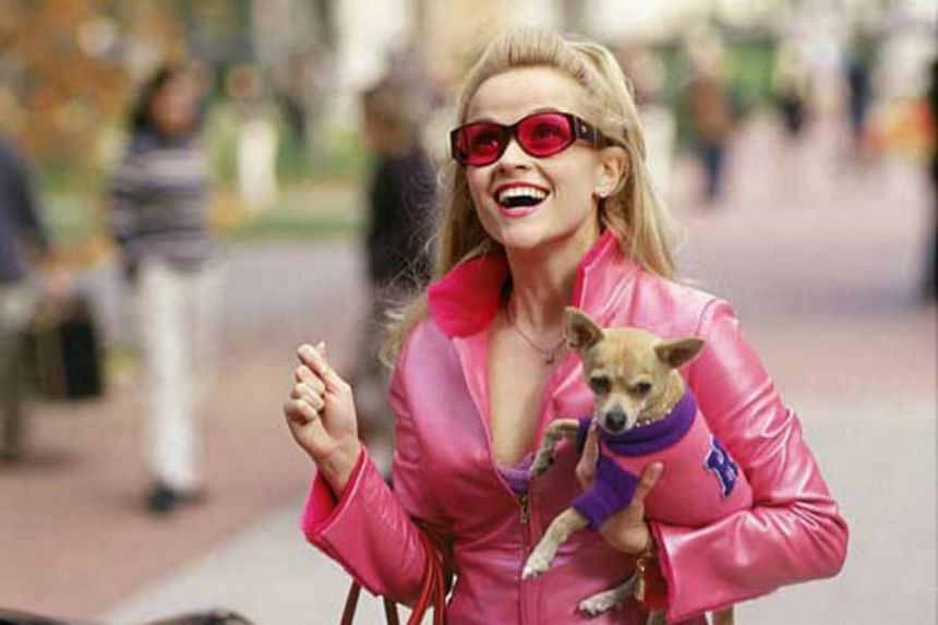 A cinema still from the 2001 romcom Legally Blonde, starring Reese Witherspoon as a Harvard Law student Elle Woods.