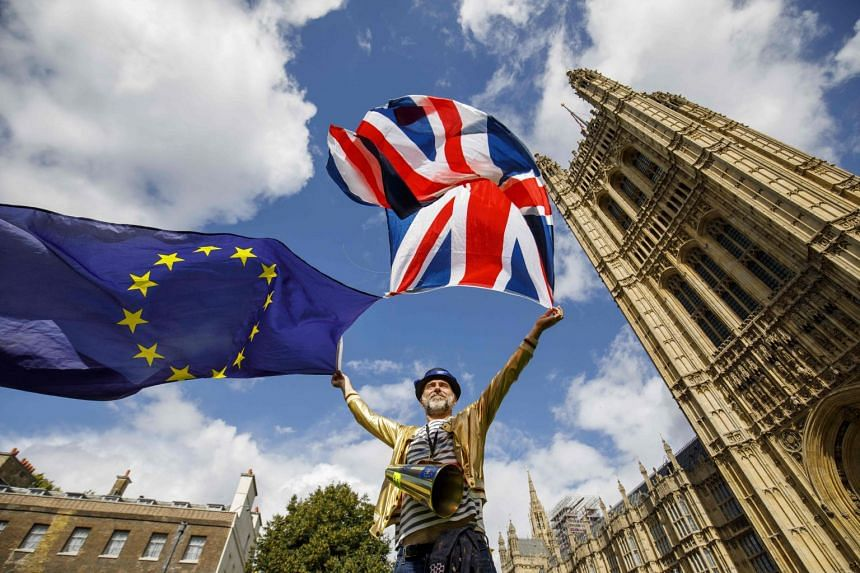 Pro-EU demonstrators protest outside the Houses of Parliament in central London, Sept 11, 2017.