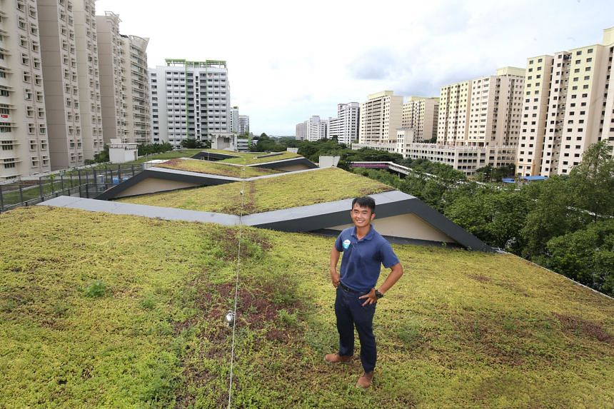 Mr Zac Toh on the green roof of 119, Edgefield Plains, a multi-storey carpark in Punggol. The space was developed by Mr Toh's firm GWS Living Art, which focuses on urban green technology. The 25-year-old was crowned Singapore's Young Green Innovator