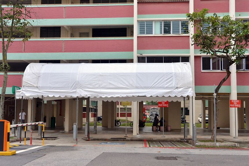 The white awning at the foot of President Halimah Yacob's block extends from the void deck and covers a carpark space reserved for police vehicles.