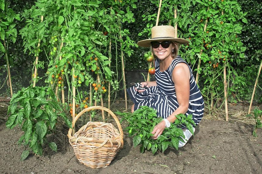 Television journalist Katie Couric (left) in her vegetable garden, where she grows tomatoes, eggplants, zucchinis, lettuces and herbs, at her home in East Hampton, New York. Vegetables, flowers and herbs at Meadowlark Lane in Bridgehampton, New York.