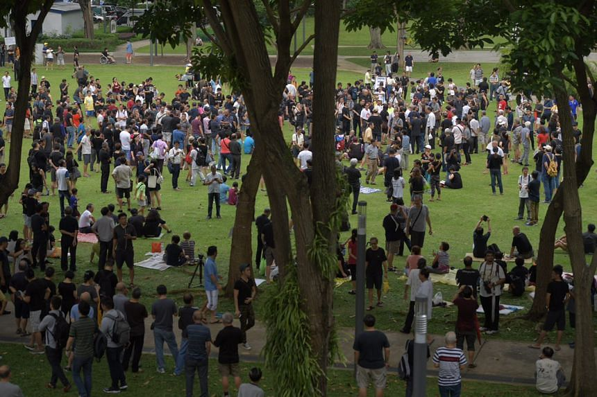 People protesting at Hong Lim Park against the reserved election, at about 5pm on Sept 16, 2017.