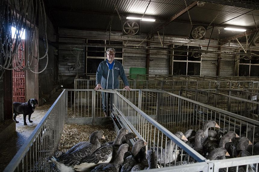 Foie gras maker Frederic Coudray poses for a photograph on his farm in Donzy, France, on March 22, 2017.