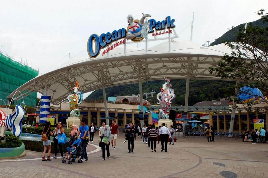 "A Halloween attraction at Ocean Park was shut down on Saturday (Sept 16), after a 21-year-old man died inside a ""haunted house""."