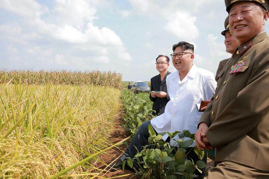 North Korean leader Kim Jong Un provides field guidance to Farm No. 1116 under KPA Unit 810, in this undated photo released by North Korea's Korean Central News Agency in September 2016.