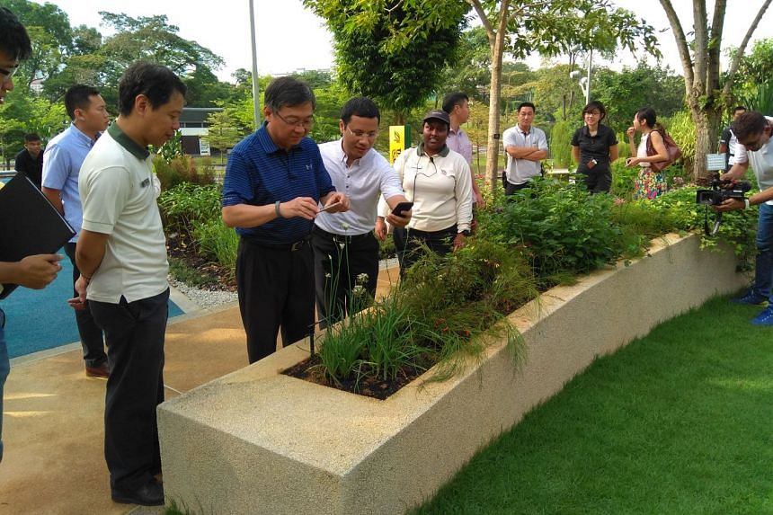 Minister for Health Gan Kim Yong (in blue) and Minister for Social and Family Development Desmond Lee (using mobile phone) looking at plants in the therapeutic garden at Bishan-Ang Mo Kio Park.