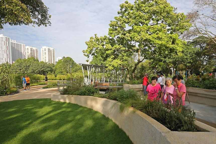 The 900 sq m therapeutic garden at Bishan-Ang Mo Kio Park, which opened yesterday, will hold activities like nature art and gardening to stimulate participants' senses through interaction with nature, and encourage motor and hand-eye coordination.