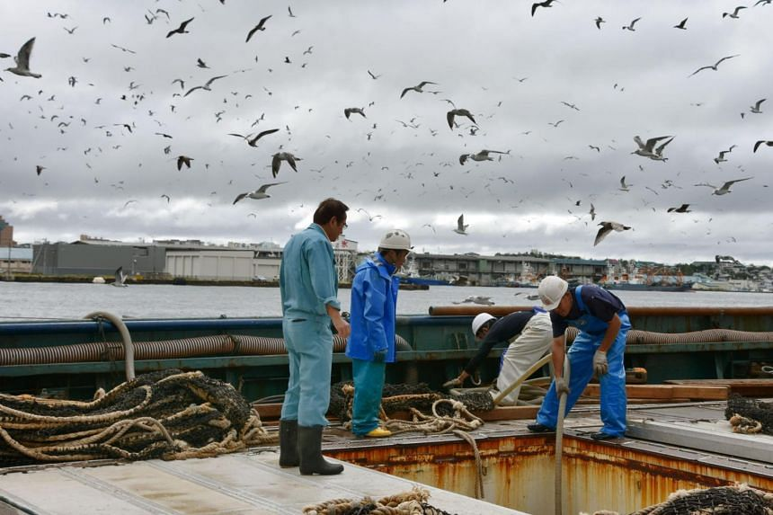 Fishermen working after North Korea fired a ballistic missile over Hokkaido earlier on the same day at a port in Kushiro, in this photo taken by Kyodo, on Sept 15, 2017.