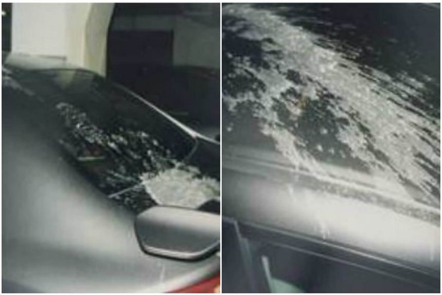 The police were informed on March 23 at about 1.40pm that six cars parked along Exeter Road had been splashed with paint remover, causing the paint to peel off.