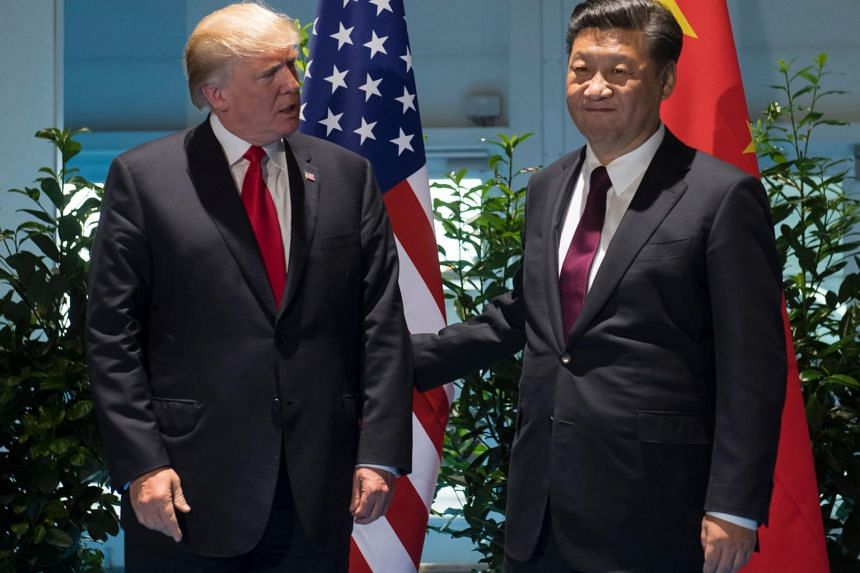 US President Donald Trump and Chinese President Xi Jinping (right) pose prior to a meeting on the sidelines of the G20 Summit in Hamburg, Germany, on July 8, 2017.