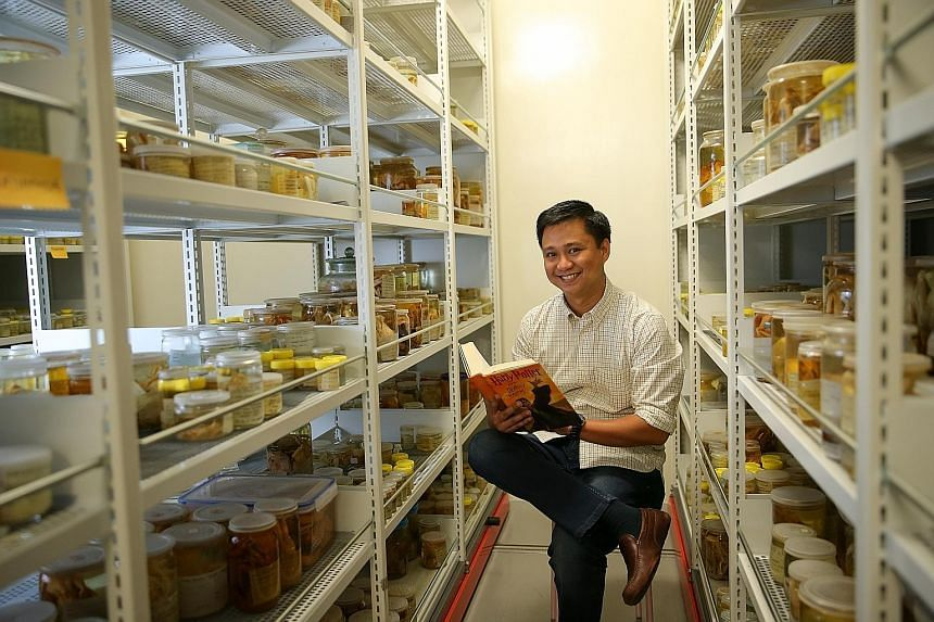 The Harryplax severus, a pale yellow crab, was named by the Lee Kong Chian Natural History Museum's crustacean curator, Dr Jose Mendoza (left), who is an avid fan of the wizarding world. Dr Mendoza was inspired by Professor Severus Snape, the potions