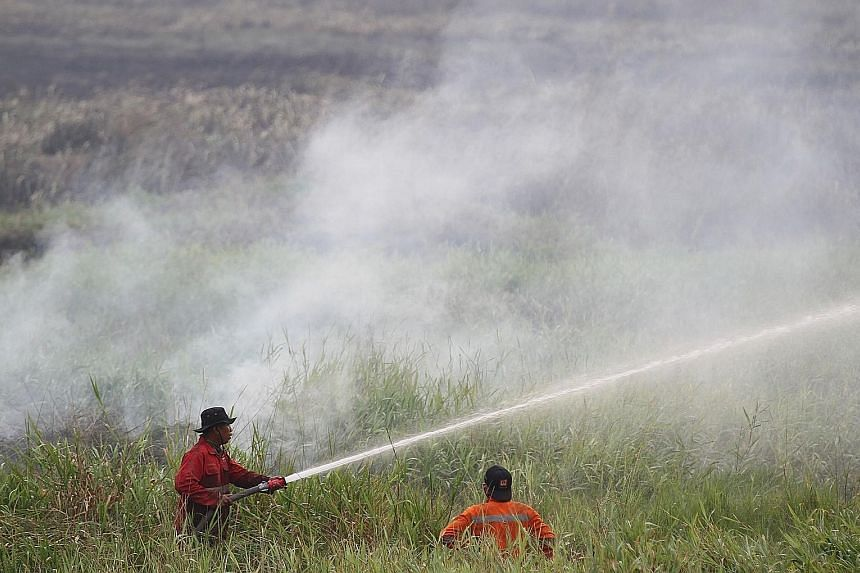 Firefighters putting out fires in South Sumatra on Aug 6. Palm oil production, when done irresponsibly, leads to deforestation and pollutes water and air, including causing haze. Of the 10 Singapore firms which responded to the WWF survey, six said t