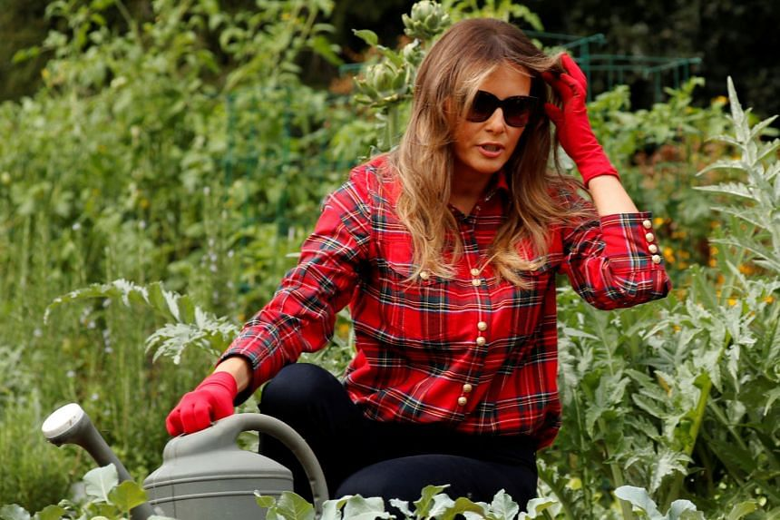 Melania Trump at work in the White House kitchen garden.