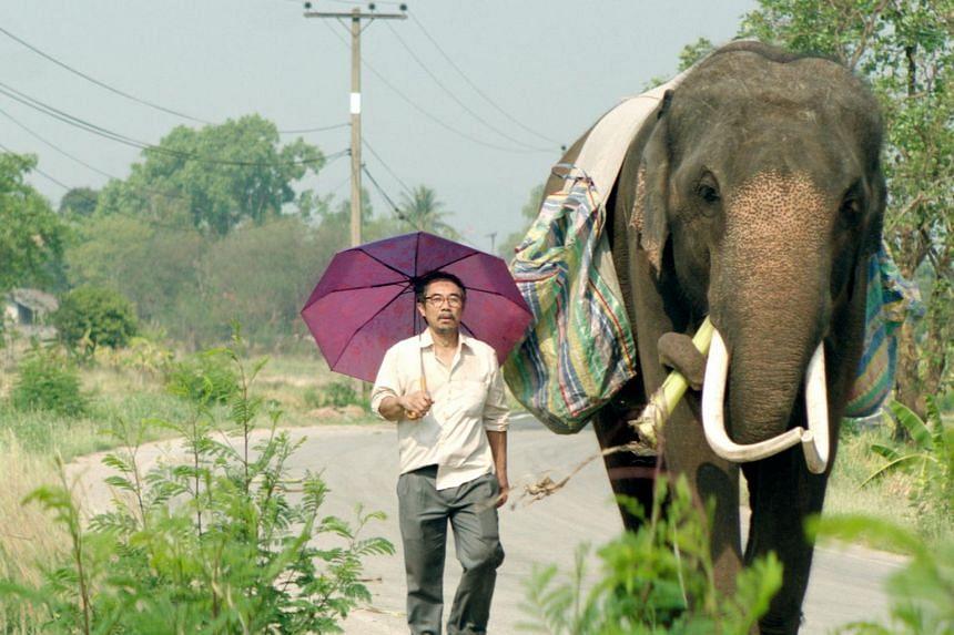 Cinema still: Pop Aye, starring Thaneth Warakulnukroh and Bong the elephant.