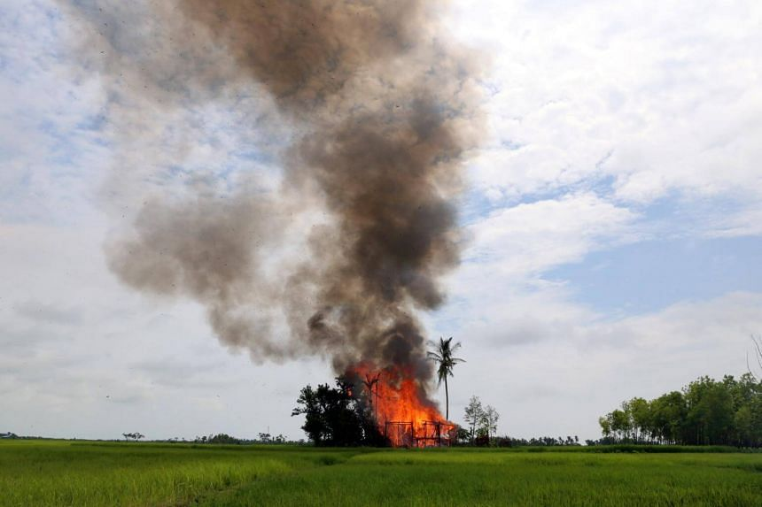 The government has reported that about half of Rohingya villages have been abandoned but it blames insurgents of the Arakan Rohingya Salvation Army for the fires and for attacking civilians.