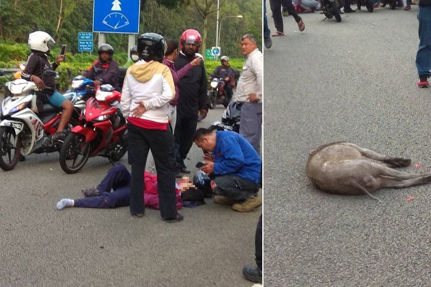 A motorcyclist and his female pillion rider were taken to hospital.