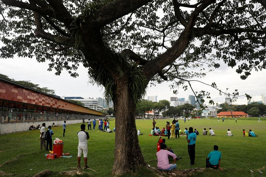 Migrant workers watch a game of cricket during a day off in the weekend in Singapore, on April 2, 2017.