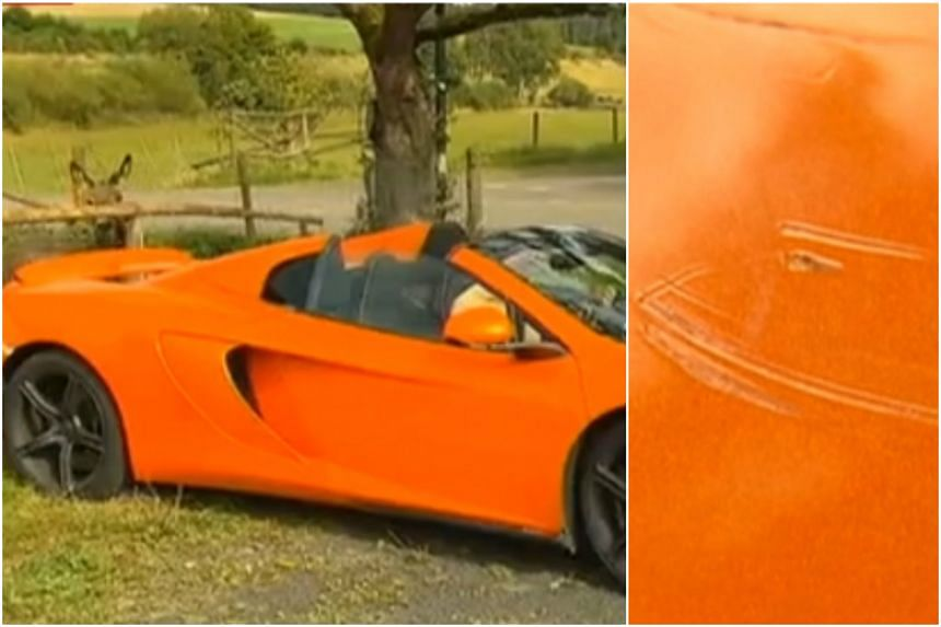 A donkey in Germany mistook an orange coloured Mclaren Spider for a carrot and bit it.