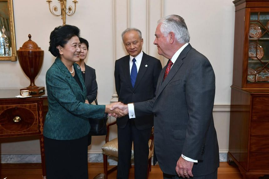 Chinese Vice-Premier Liu Yandong said the two sides should conscientiously implement the consensus reached by Chinese President Xi Jinping and US President Donald Trump.