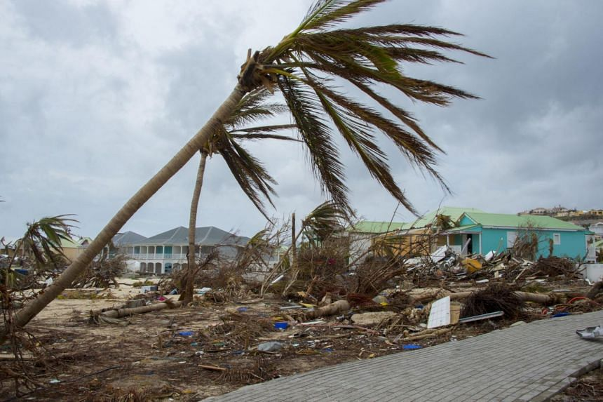 Destroyed trees and houses are seen after the passage of hurricane Irma and Maria in Orient Bay, St. Martin, on Sept 20, 2017.