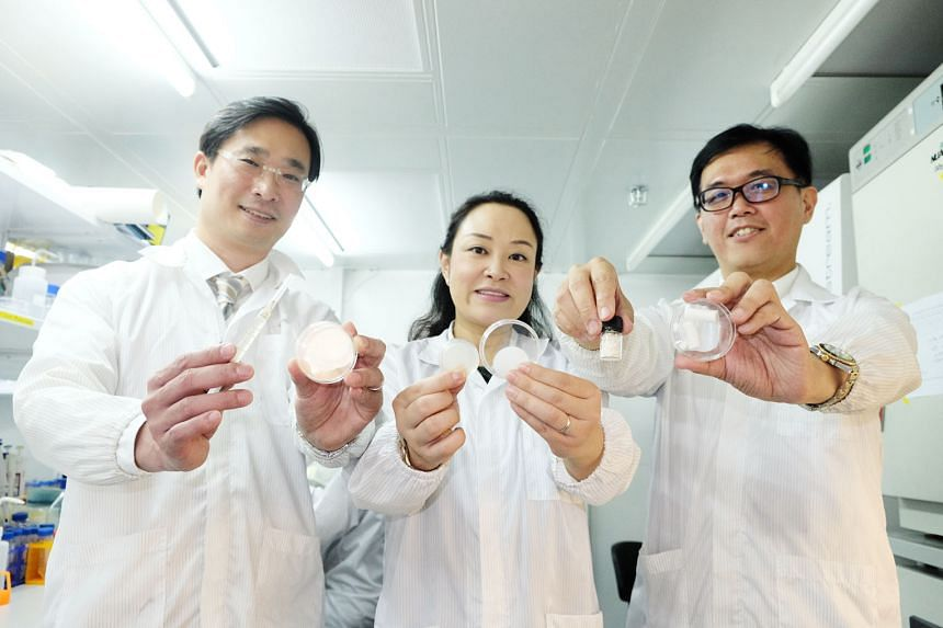 (From left) Dr Marcus Wong, Prof Cleo Choong and Prof Andrew Tan with the various types of materials that can contain a protein called ANGPTL4, which include a sponge, filler, gel patch and hydrogel. The protein, found in abundance in fat tissue, was