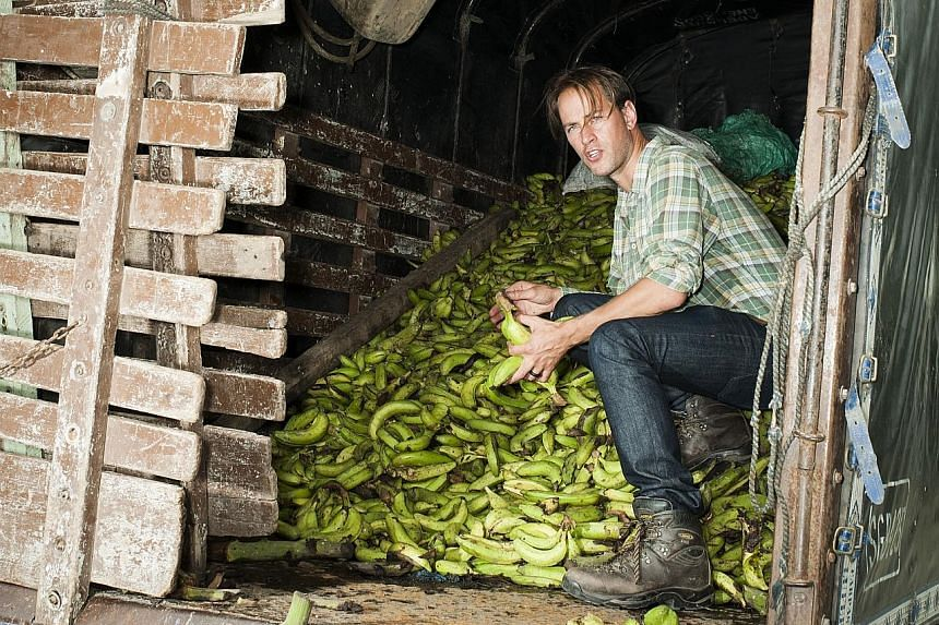 Food-waste campaigner Tristram Stuart examines a pile of bananas in Colombia that has been rejected by European supermarkets.