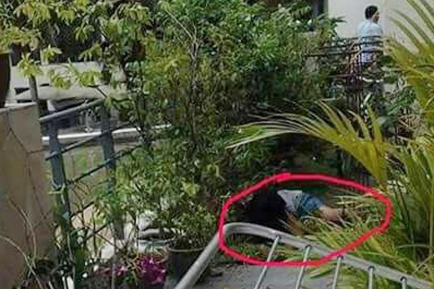 According to photos taken of the scene by an eyewitness, the domestic worker from Indonesia had fallen into a neighbour's ground floor terrace.