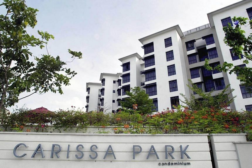 The maid, who is in her 20s, was apparently cleaning the windows of a unit in Carissa Park condominium in Tampines on Tuesday (Oct 3), when she lost her balance and fell.