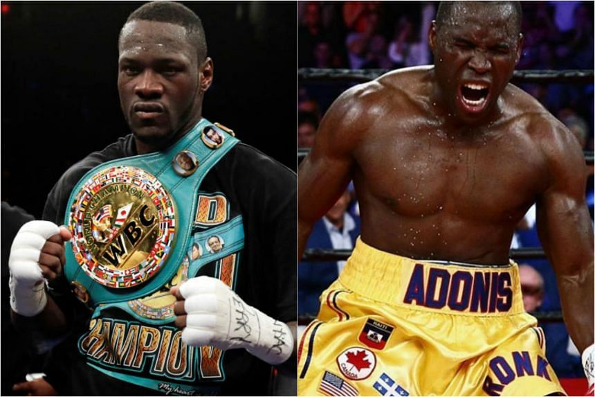 Undefeated champion Deontay Wilder will defend his World Boxing Council (WBC) heavyweight crown with a rematch against Haitian-born Canadian Bermane Stiverne next month.