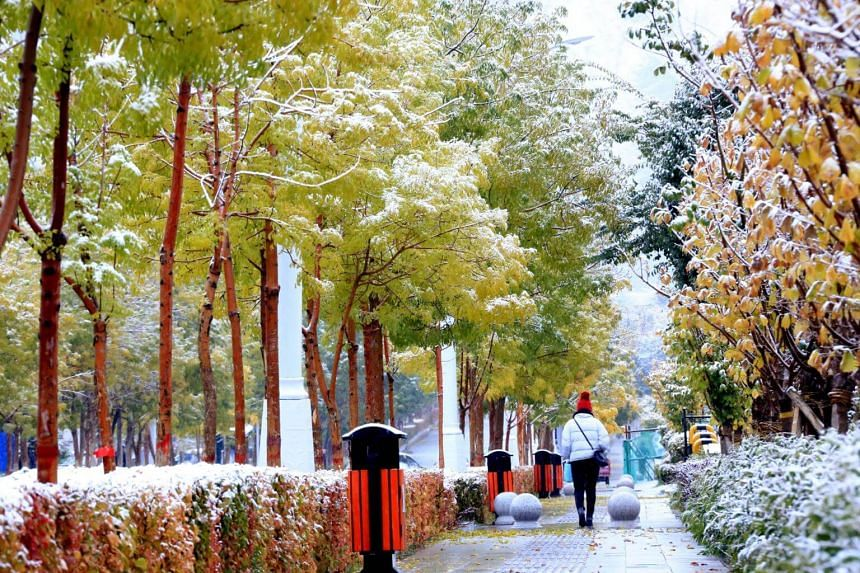 The cold front has brought snow to the Hami prefecture in the Xinjiang Uighur autonomous region in northwestern China, since Oct 1.