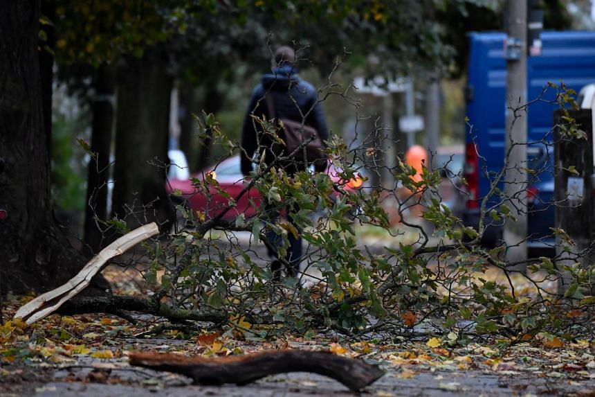 Debris from fallen trees at a park in Berlin on Oct 5, 2017, after strong winds lashed the capital.