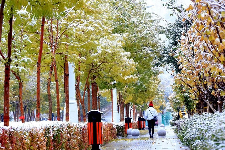 The cold front has brought snow to the Hami prefecture in the Xinjiang Uighur autonomous region in north-western China.