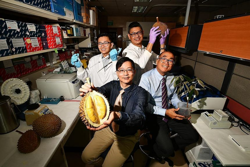 (Clockwise from top left) Dr Yong Chern Han (holding a pipette and test tube), 39, research fellow, Cancer & Stem Cell Biology Programme, Duke-NUS Medical School; Mr Cedric Ng, 46, senior research associate, National Cancer Centre Singapore (NCCS); P