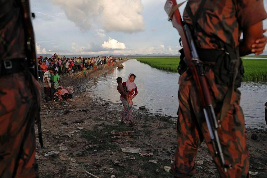 Bangladeshi border guards standing watch as Rohingya refugees who fled from Myanmar make their way through a rice field after crossing the border in Palang Khali.