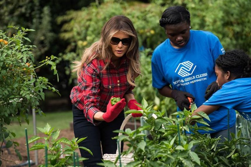 US First Lady Melania Trump works in the White House kitchen garden with children from the Boys and Girls Club of Greater Washington on Sept 22, 2017.