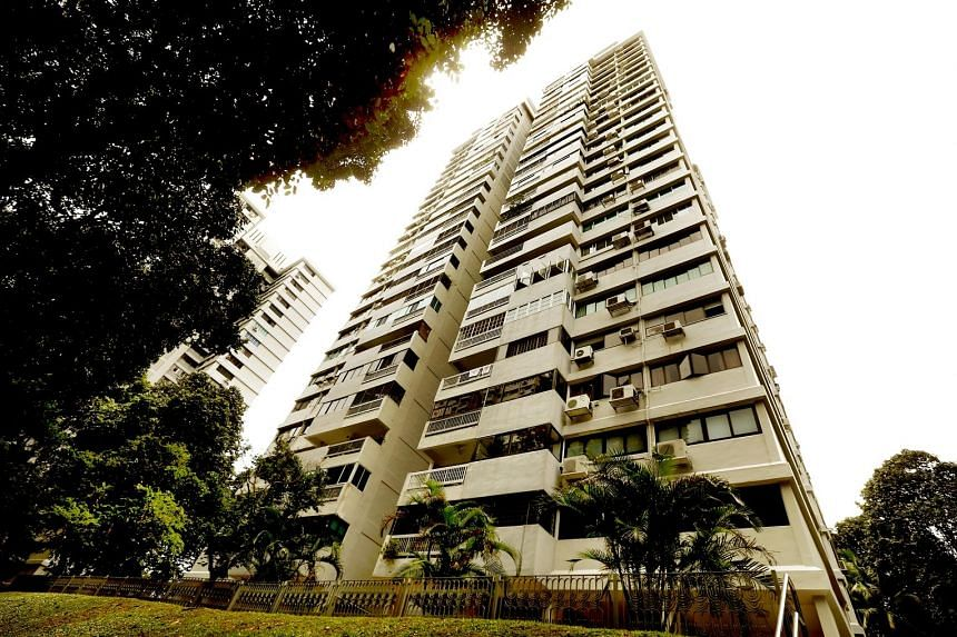 Braddell View, the largest of the former HUDC estates at 1.124 million sq ft, has 63 years left on its 99-year lease.