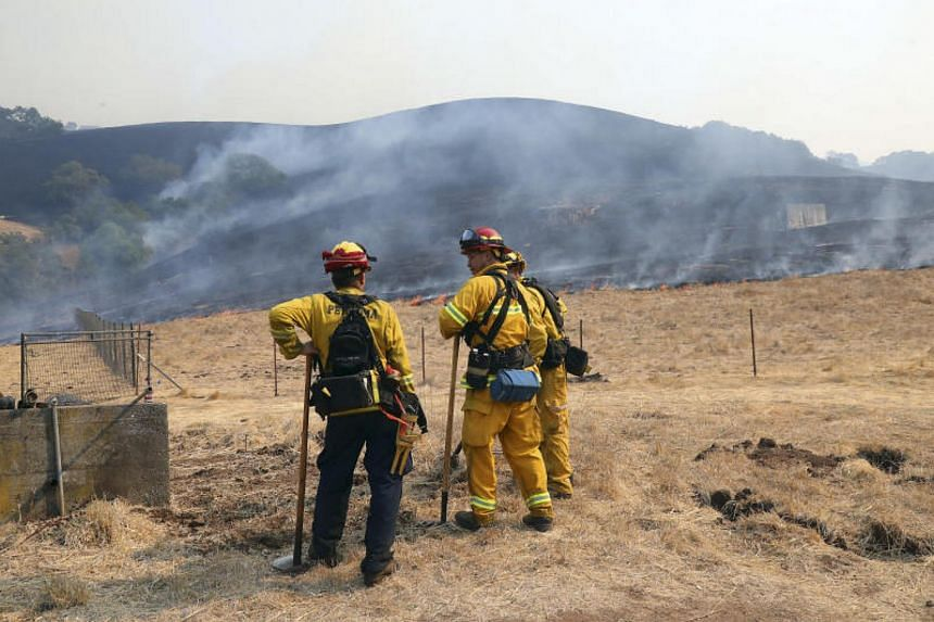 Firefighters work to contain a wildfire before winds were expected to pick up later in the day, on a ranch in Bennett Valley, California, on Oct 11, 2017.