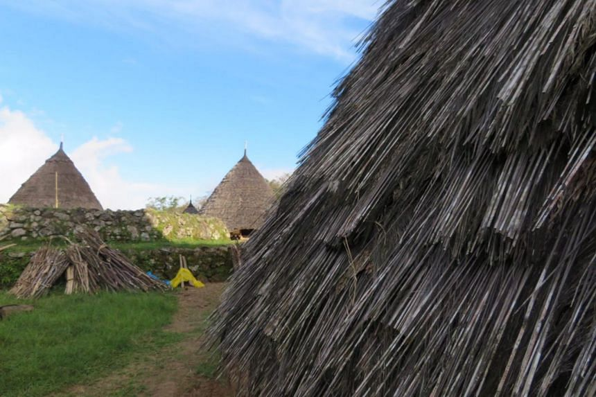 The traditional Mbaru Niang style of housing is formed by cone-shaped houses raised on stilts, supported by a bamboo skeleton, and lined on the outside by the bark of the palm tree.