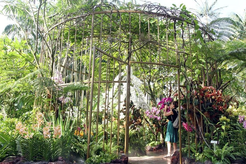 The Singapore Botanic Gardens was named a World Heritage Site in 2015. Singapore withdrew from Unesco in 1985 and rejoined in 2007.