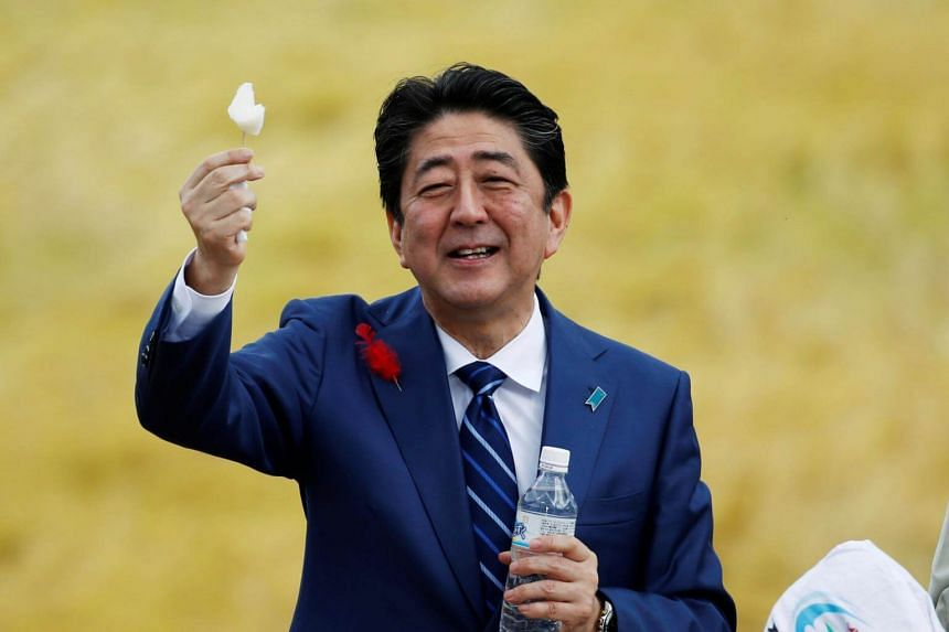 Prime Minister Shinzo Abe's conservative Liberal Democratic Party (LDP) is projected to win as many as 303 of the 465 seats up for grabs in the Oct 22 election, according to a poll by the Mainichi Shimbun.